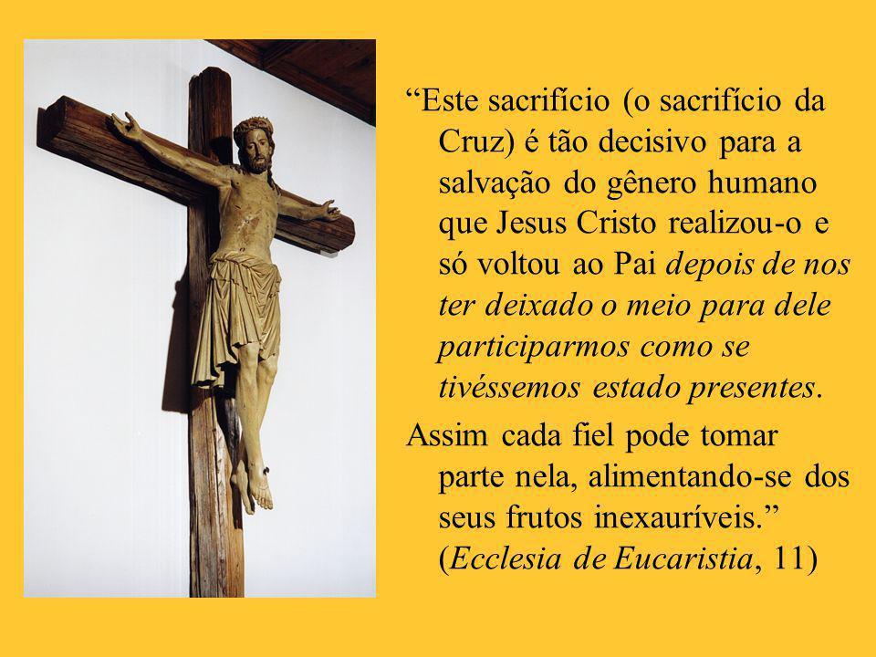 """""""Este sacrifício (o sacrifício da Cruz) é tão decisivo para a salvação do gênero humano que Jesus Cristo realizou-o e só voltou ao Pai depois de nos t"""