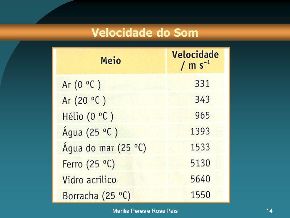 13 No ar, a 20 ºC, a velocidade do som é 343 m s -1 v =  x f Velocidade do Som Marília Peres e Rosa Pais