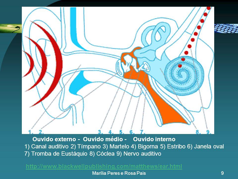 19 ECO REVERBERAÇÃO Marília Peres e Rosa Pais