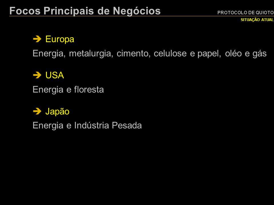 PROTOCOLO DE QUIOTO SITUAÇÃO ATUAL Focos Principais de Negócios  Europa Energia, metalurgia, cimento, celulose e papel, oléo e gás  USA Energia e fl
