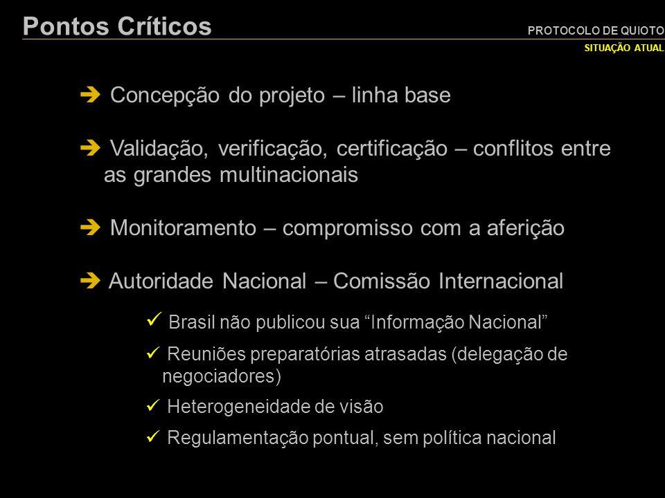 PROTOCOLO DE QUIOTO SITUAÇÃO ATUAL Pontos Críticos  Concepção do projeto – linha base  Validação, verificação, certificação – conflitos entre as gra