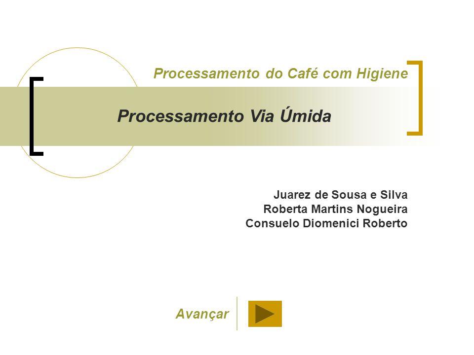 Juarez de Sousa e Silva Roberta Martins Nogueira Consuelo Diomenici Roberto Processamento do Café com Higiene Processamento Via Úmida Avançar