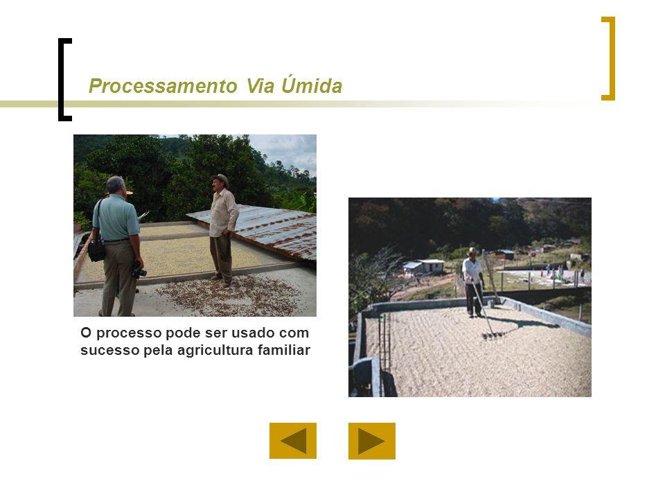 O processo pode ser usado com sucesso pela agricultura familiar Processamento Via Úmida