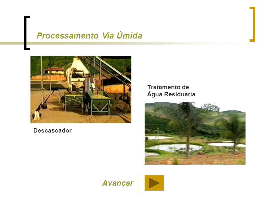 Descascador Tratamento de Água Residuária Processamento Via Úmida Avançar