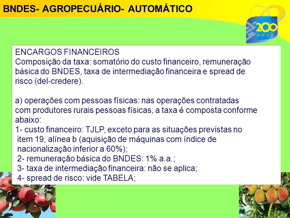 ENCARGOS FINANCEIROS Composi ç ão da taxa: somat ó rio do custo financeiro, remunera ç ão b á sica do BNDES, taxa de intermedia ç ão financeira e spread de risco (del-credere).