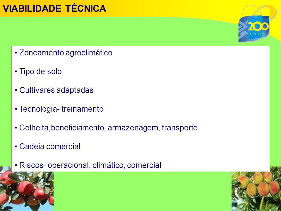 • Zoneamento agroclim á tico • Tipo de solo • Cultivares adaptadas • Tecnologia- treinamento • Colheita,beneficiamento, armazenagem, transporte • Cadeia comercial • Riscos- operacional, clim á tico, comercial VIABILIDADE TÉCNICA