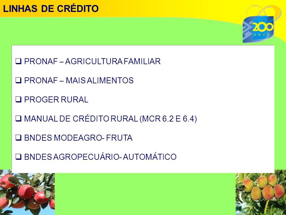  PRONAF – AGRICULTURA FAMILIAR  PRONAF – MAIS ALIMENTOS  PROGER RURAL  MANUAL DE CR É DITO RURAL (MCR 6.2 E 6.4)  BNDES MODEAGRO- FRUTA  BNDES AGROPECU Á RIO- AUTOM Á TICO LINHAS DE CRÉDITO