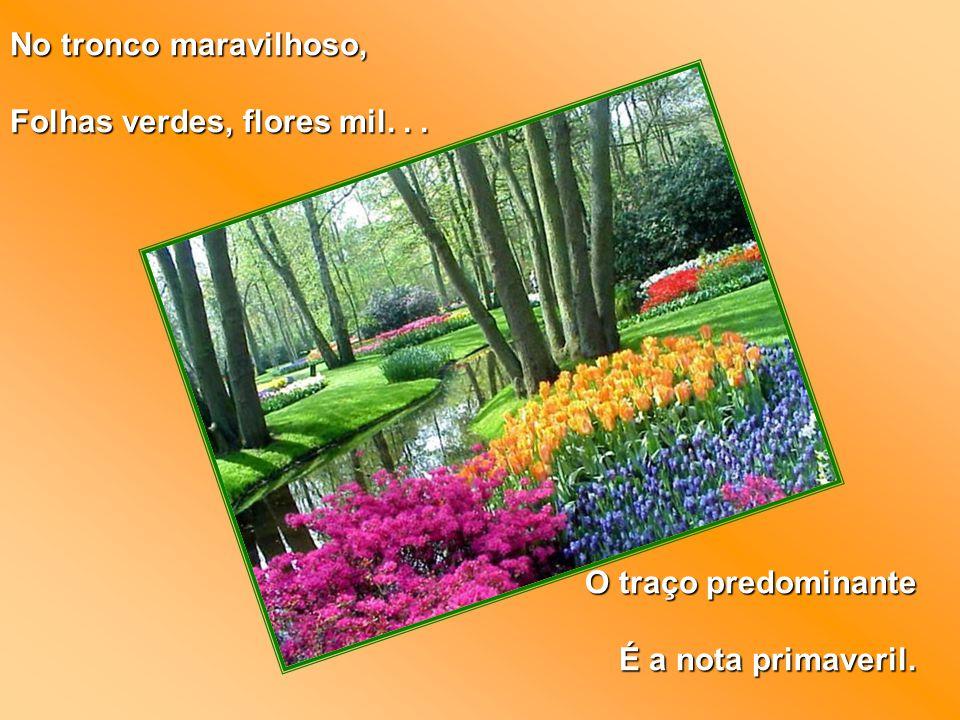 No tronco maravilhoso, Folhas verdes, flores mil... O traço predominante É a nota primaveril.