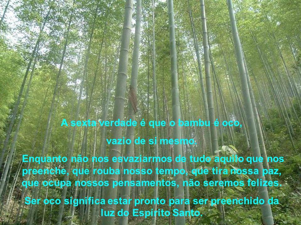 """A quinta verdade é que o bambu é cheio de """"nós"""" ( e não de eu's ). Como ele é oco, sabe que se crescesse sem nós seria muito fraco. Os nós são os prob"""