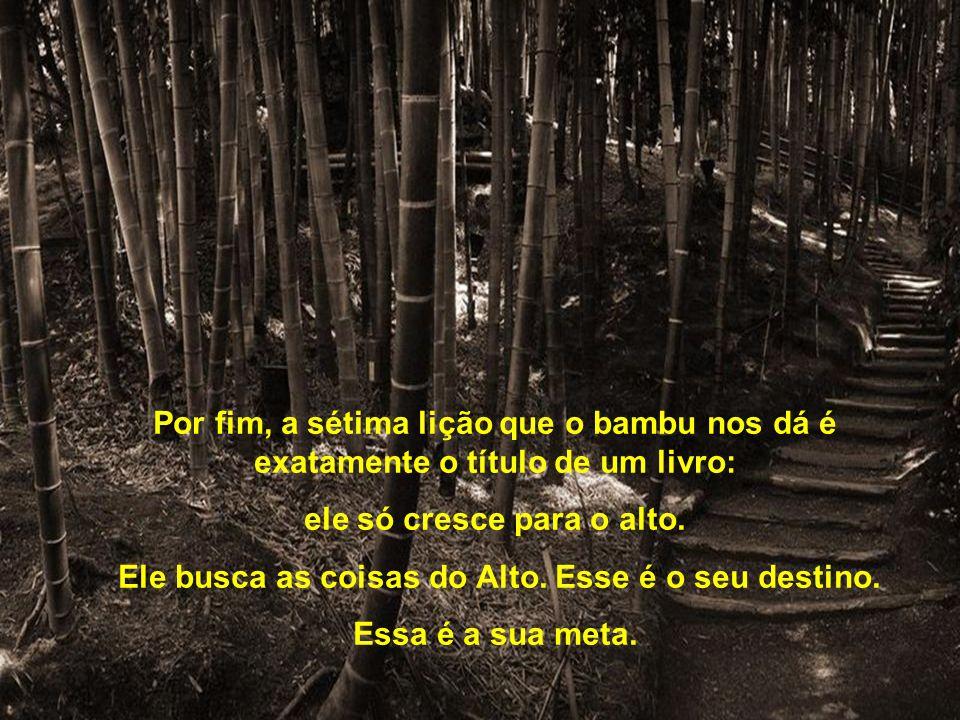 A sexta verdade é que o bambu é oco, vazio de si mesmo. Enquanto não nos esvaziarmos de tudo aquilo que nos preenche, que rouba nosso tempo, que tira