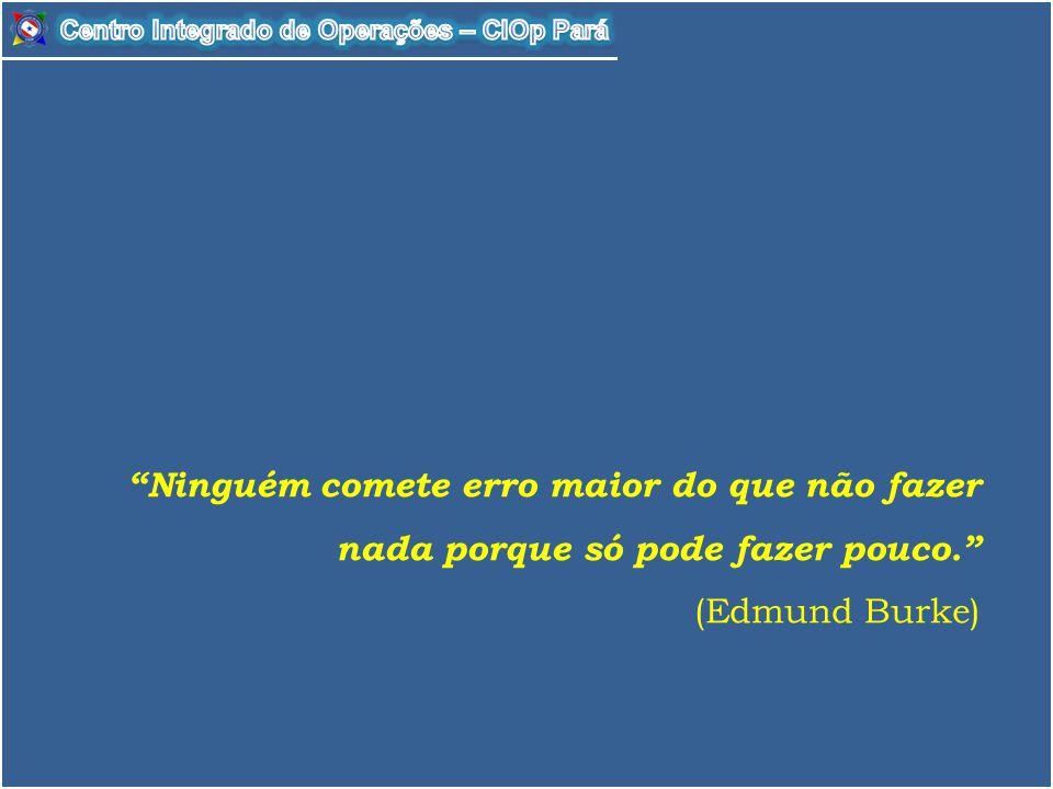 """""""Ninguém comete erro maior do que não fazer nada porque só pode fazer pouco."""" (Edmund Burke)"""