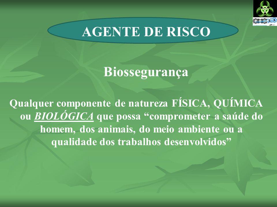 RISCO BIOLÓGICO Bactérias Vírus Fungos Ectoparasitas Protozoários Príons