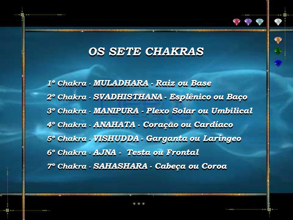OS SETE CHAKRAS OS SETE CHAKRAS 1º Chakra - MULADHARA - Raiz ou Base 1º Chakra - MULADHARA - Raiz ou Base 2º Chakra - SVADHISTHANA - Esplênico ou Baço 2º Chakra - SVADHISTHANA - Esplênico ou Baço 3º Chakra - MANIPURA - Plexo Solar ou Umbilical 3º Chakra - MANIPURA - Plexo Solar ou Umbilical 4º Chakra - ANAHATA - Coração ou Cardíaco 4º Chakra - ANAHATA - Coração ou Cardíaco 5º Chakra - VISHUDDA - Garganta ou Laríngeo 5º Chakra - VISHUDDA - Garganta ou Laríngeo 6º Chakra - AJNA - Testa ou Frontal 6º Chakra - AJNA - Testa ou Frontal 7º Chakra - SAHASHARA - Cabeça ou Coroa 7º Chakra - SAHASHARA - Cabeça ou Coroa