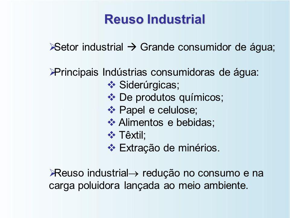 Tipos de Reuso   Efluentes da Irrigação;   Efluentes Industriais;   Esgotos sanitários;   Outros.