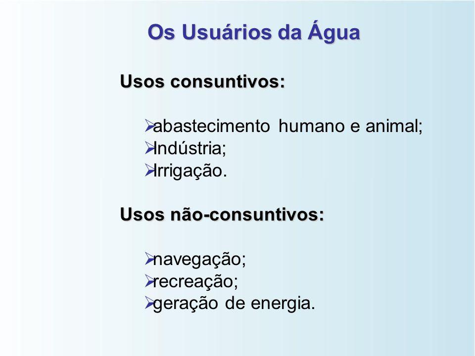 Os Usuários da Água Usos consuntivos:   abastecimento humano e animal;   Indústria;   Irrigação.