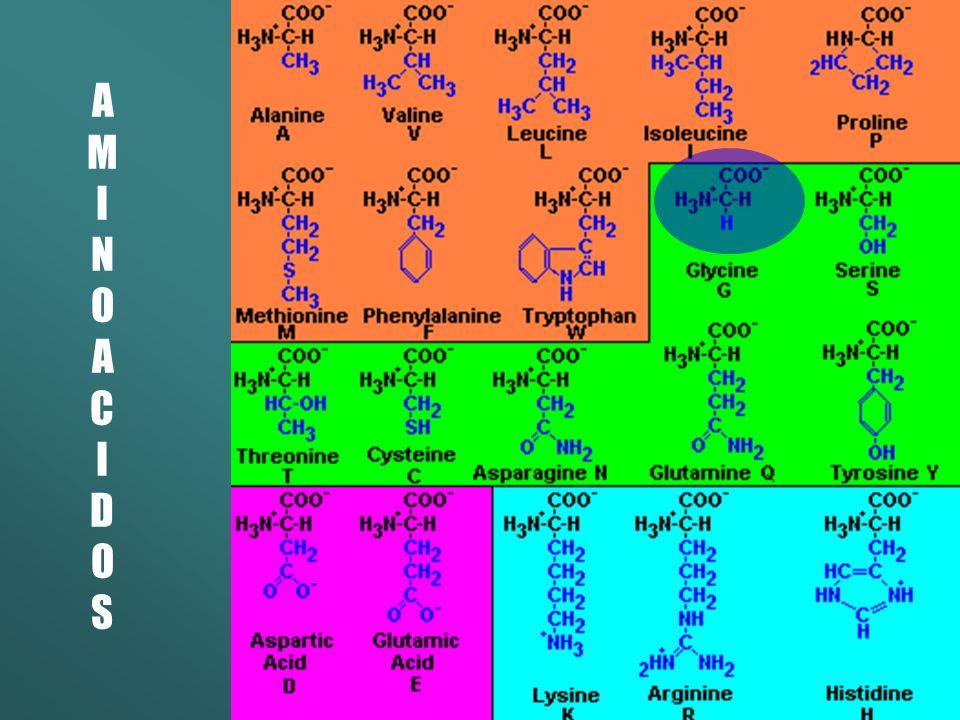 Carbohidratos Glicose – 5 centros quirais 64 possíveis isômeros Apenas 1 é ativo no organismo Sacarose – 9 centros quirais 512 possíveis isômeros