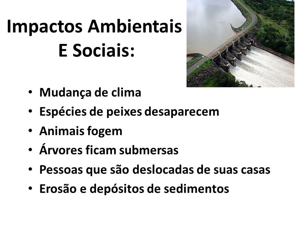 Impactos Ambientais E Sociais: • Mudança de clima • Espécies de peixes desaparecem • Animais fogem • Árvores ficam submersas • Pessoas que são desloca