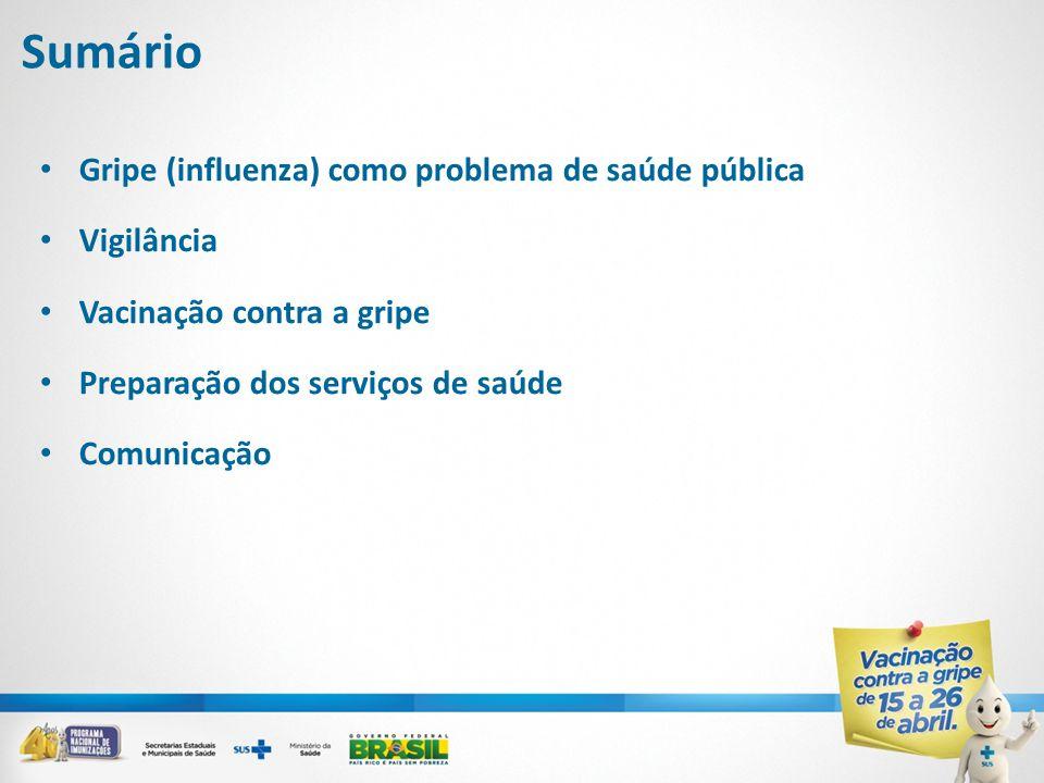 Sumário • Gripe (influenza) como problema de saúde pública • Vigilância • Vacinação contra a gripe • Preparação dos serviços de saúde • Comunicação