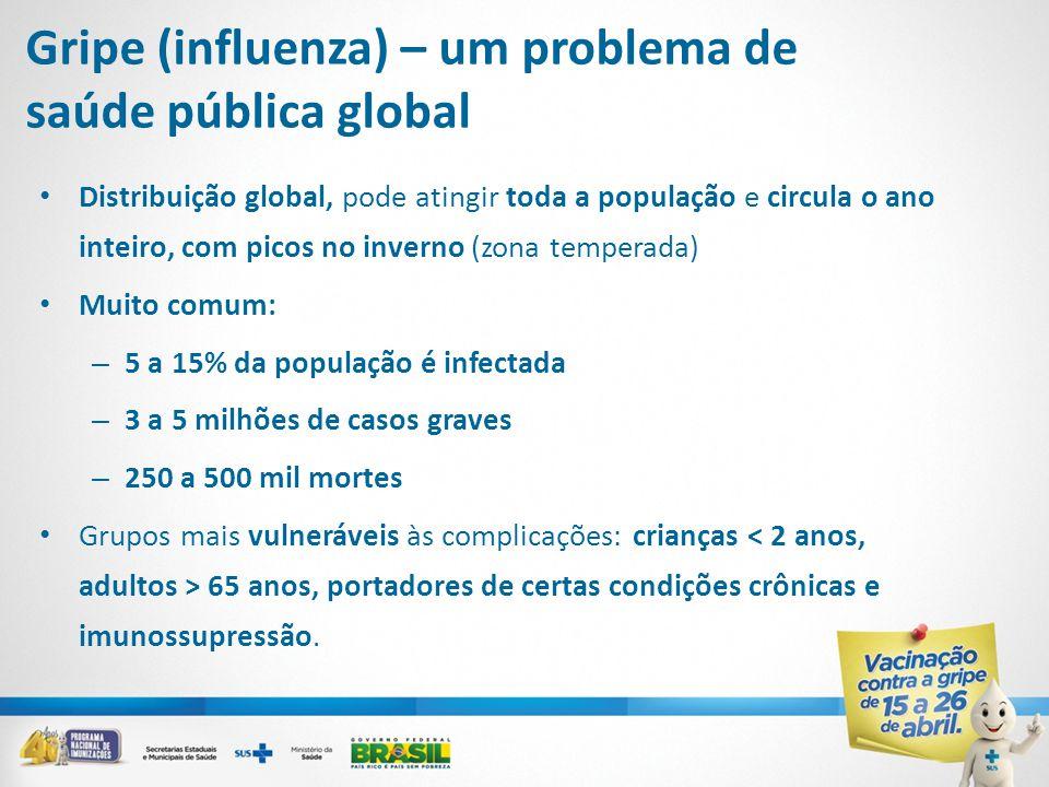 Gripe (influenza) – um problema de saúde pública global • Distribuição global, pode atingir toda a população e circula o ano inteiro, com picos no inv