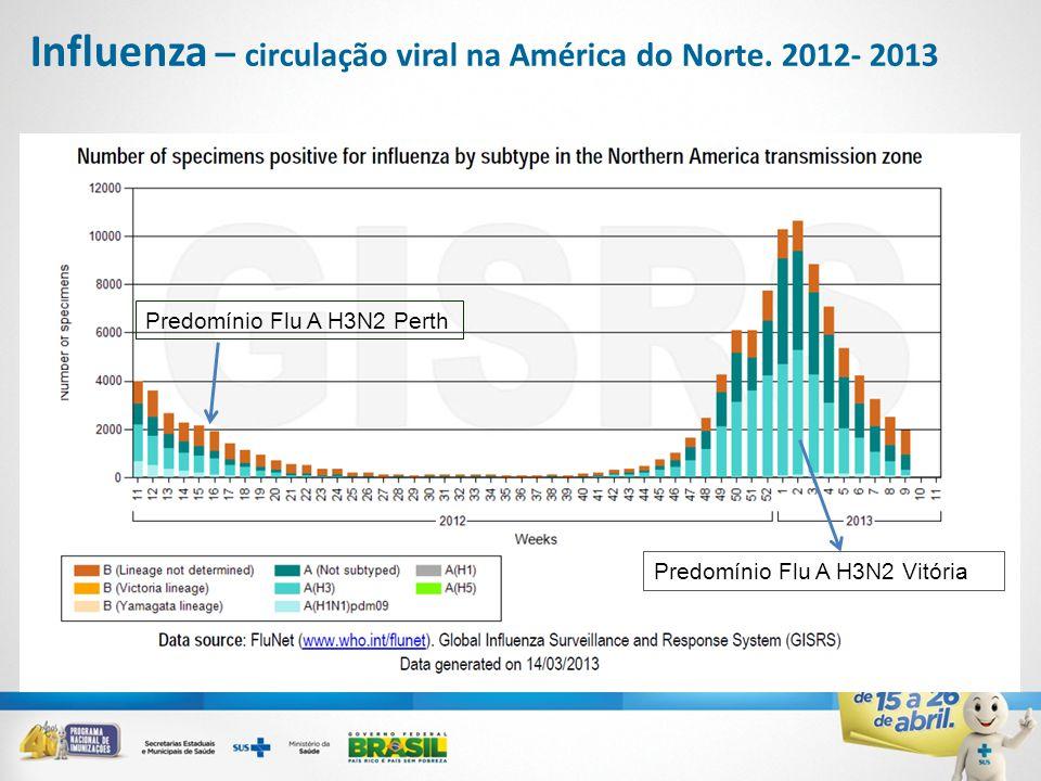 Influenza – circulação viral na América do Norte. 2012- 2013 Predomínio Flu A H3N2 Vitória Predomínio Flu A H3N2 Perth