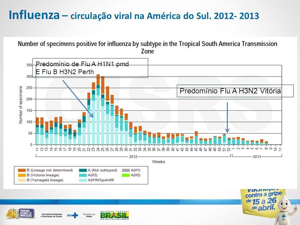 Predomínio de Flu A H1N1 pmd E Flu B H3N2 Perth Predomínio Flu A H3N2 Vitória Influenza – circulação viral na América do Sul. 2012- 2013