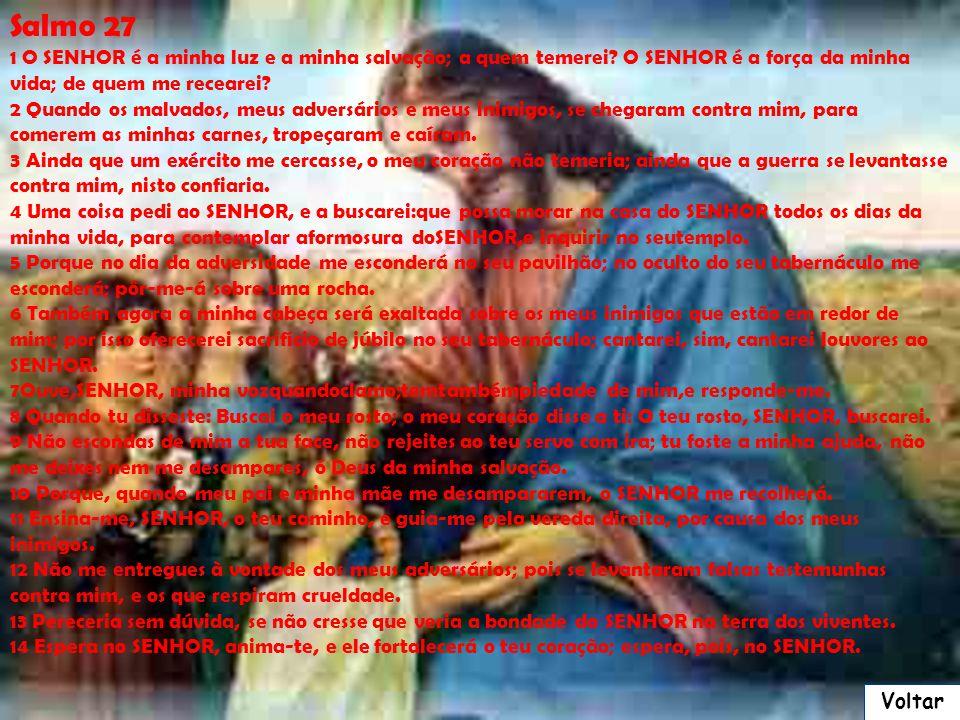 João 14 16 E eu rogarei ao Pai, e ele vos dará outro Consolador, para que fique convosco para sempre; 17 O Espírito de verdade, que o mundo não pode r