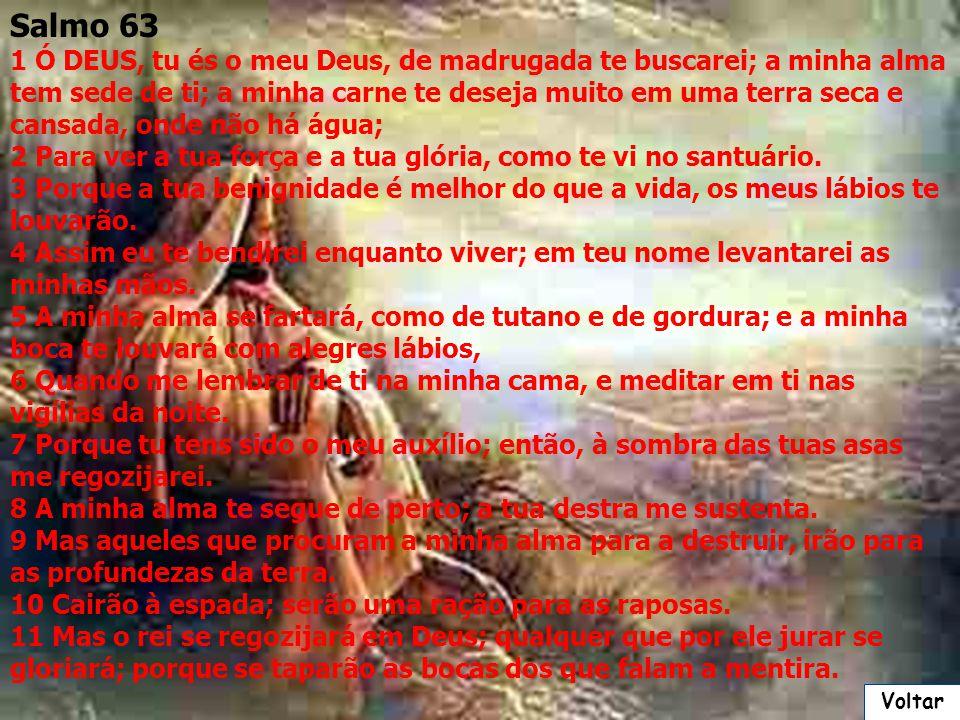 Salmo 63 1 Ó DEUS, tu és o meu Deus, de madrugada te buscarei; a minha alma tem sede de ti; a minha carne te deseja muito em uma terra seca e cansada, onde não há água; 2 Para ver a tua força e a tua glória, como te vi no santuário.