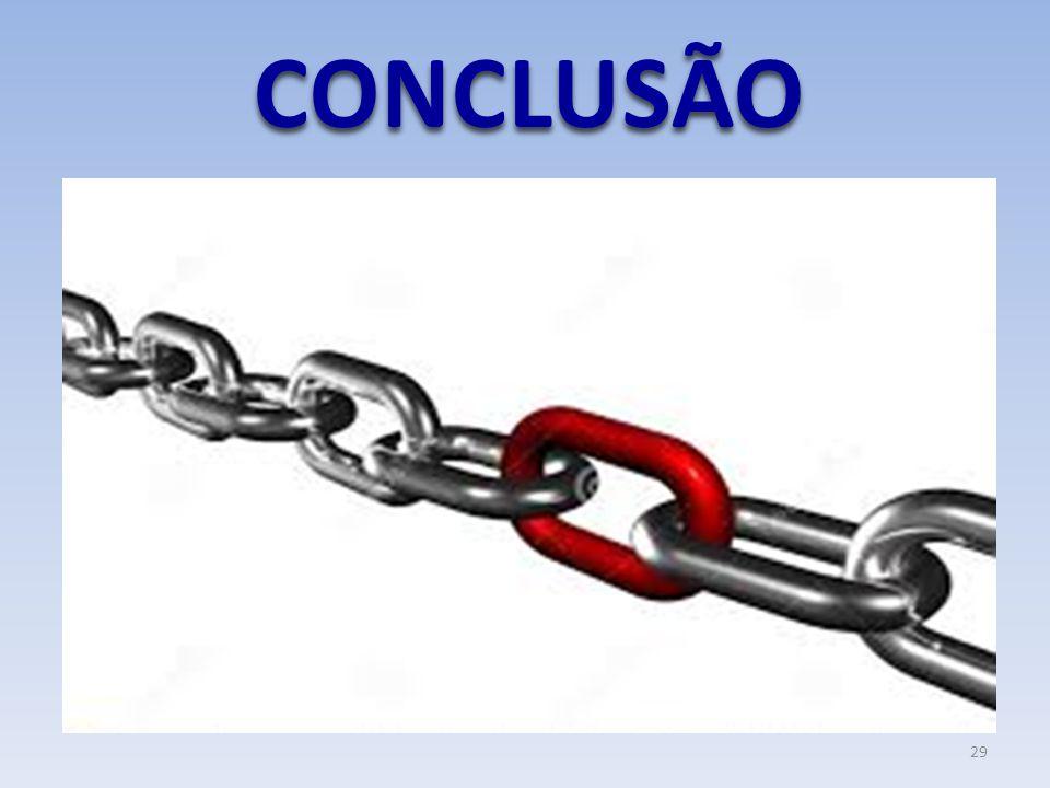 CONCLUSÃO 29