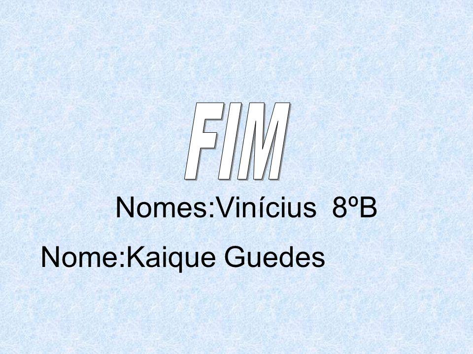 Nomes:Vinícius 8ºB Nome:Kaique Guedes