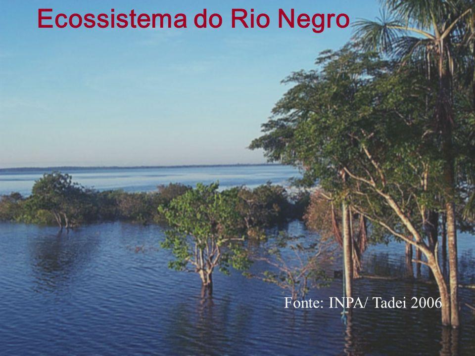 Ecossistema do Rio Negro Fonte: INPA/ Tadei 2006