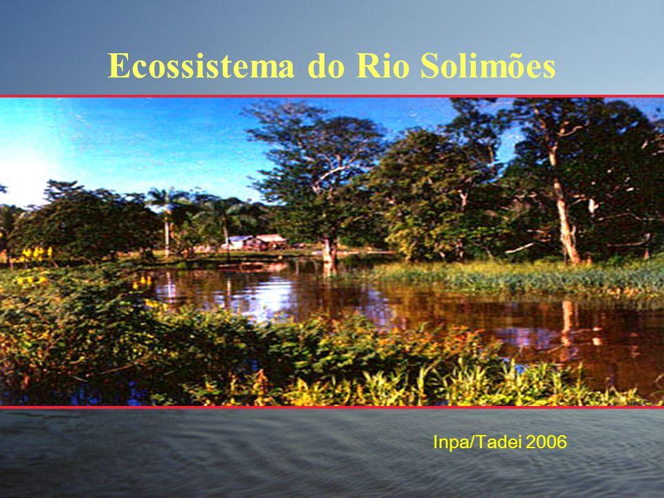 Ecossistema do Rio Solimões Inpa/Tadei 2006