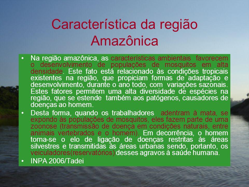 Característica da região Amazônica •Na região amazônica, as características ambientais favorecem o desenvolvimento de populações de mosquitos em alta