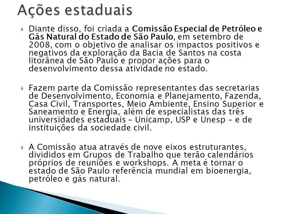  Diante disso, foi criada a Comissão Especial de Petróleo e Gás Natural do Estado de São Paulo, em setembro de 2008, com o objetivo de analisar os im