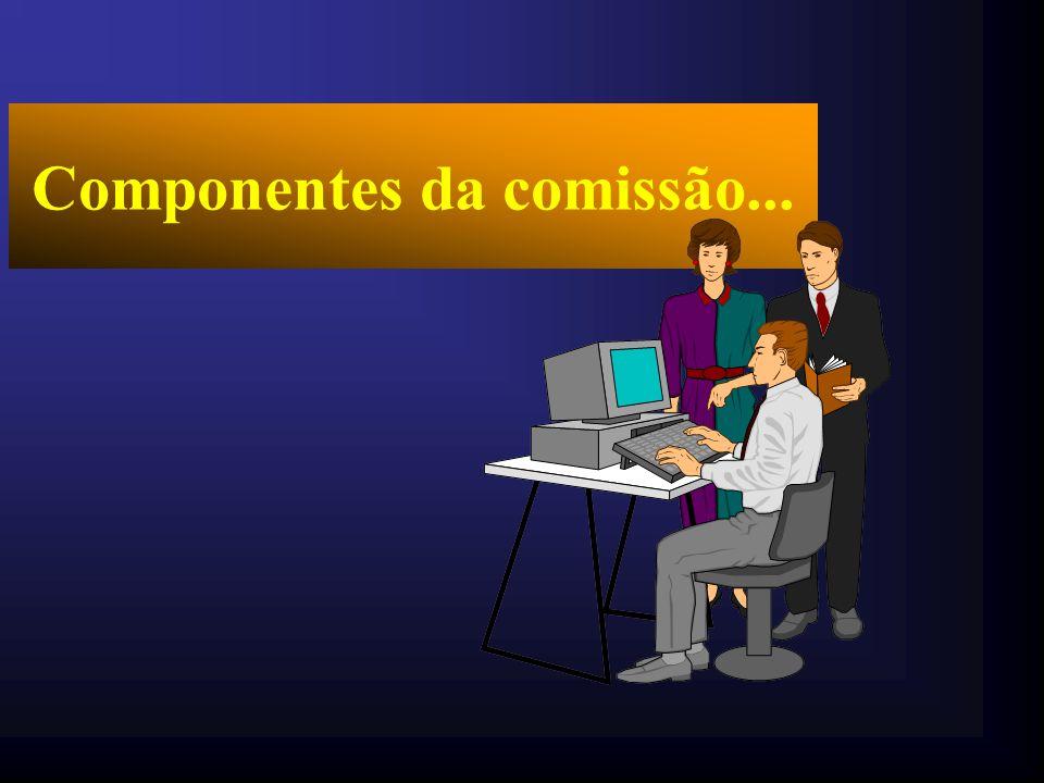 Início dos trabalhos da comissão...
