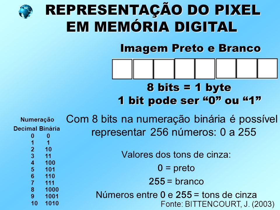 """REPRESENTAÇÃO DO PIXEL EM MEMÓRIA DIGITAL EM MEMÓRIA DIGITAL Imagem Preto e Branco 8 bits = 1 byte 1 bit pode ser """"0"""" ou """"1"""" Numeração Decimal Binária"""