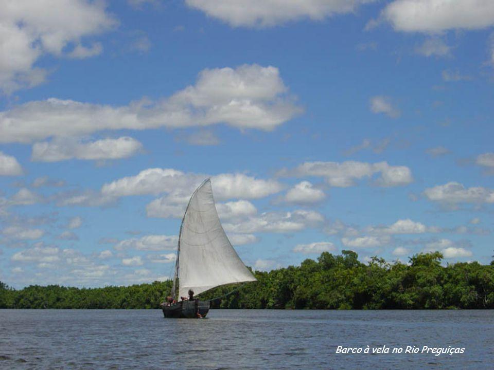Barco à vela no Rio Preguiças