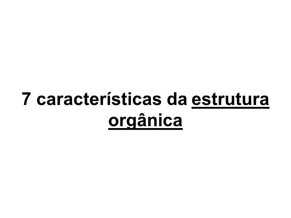 7 características da estrutura orgânica