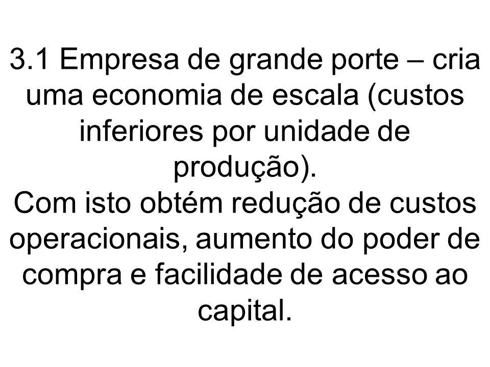 3.1 Empresa de grande porte – cria uma economia de escala (custos inferiores por unidade de produção). Com isto obtém redução de custos operacionais,