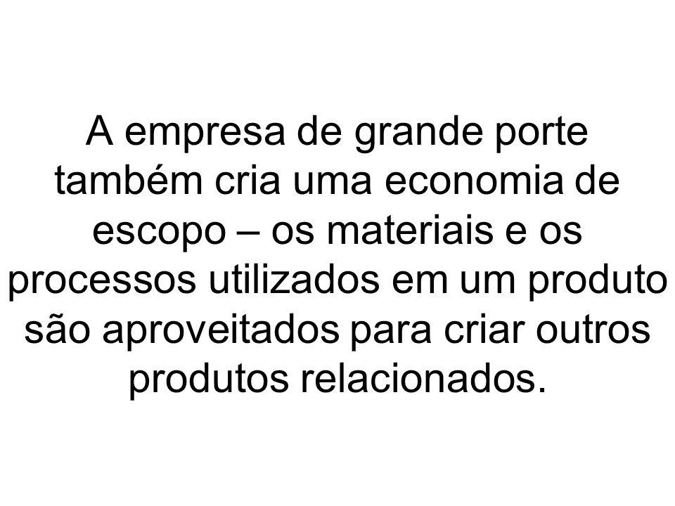 A empresa de grande porte também cria uma economia de escopo – os materiais e os processos utilizados em um produto são aproveitados para criar outros