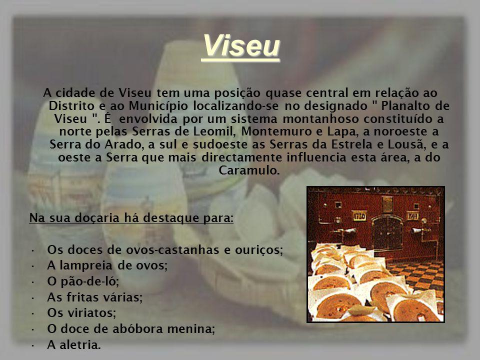 Viseu A cidade de Viseu tem uma posição quase central em relação ao Distrito e ao Município localizando-se no designado