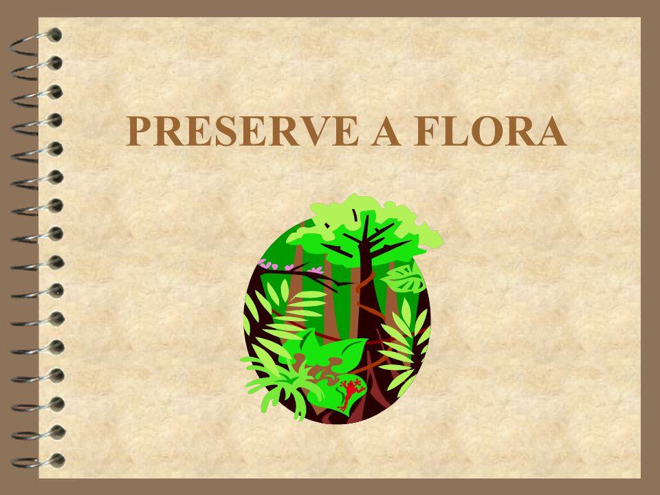 PRESERVE A FLORA