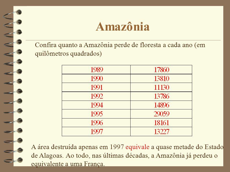 Amazônia Confira quanto a Amazônia perde de floresta a cada ano (em quilômetros quadrados) A área destruída apenas em 1997 equivale a quase metade do Estado de Alagoas.Ao todo, nas últimas décadas, a Amazônia já perdeu o equivalente a uma França.