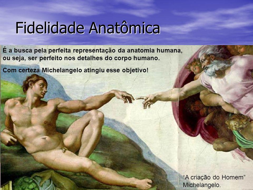 Fidelidade Anatômica É a busca pela perfeita representação da anatomia humana, ou seja, ser perfeito nos detalhes do corpo humano.