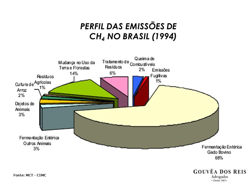 Fonte: MCT - CIMC PERFIL DAS EMISSÕES DE CH 4 NO BRASIL (1994)