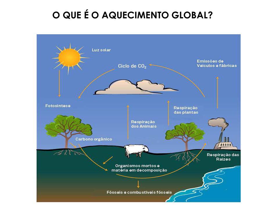 Variação na Temperatura da Superfície da Terra nos Últimos 140 anos Fonte: Intergovernamental Panel on Climate Change - IPCC O QUE É O AQUECIMENTO GLOBAL?