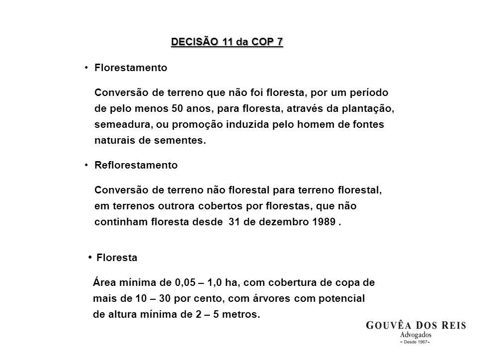 DECISÃO 11 da COP 7 •Florestamento Conversão de terreno que não foi floresta, por um período de pelo menos 50 anos, para floresta, através da plantaçã