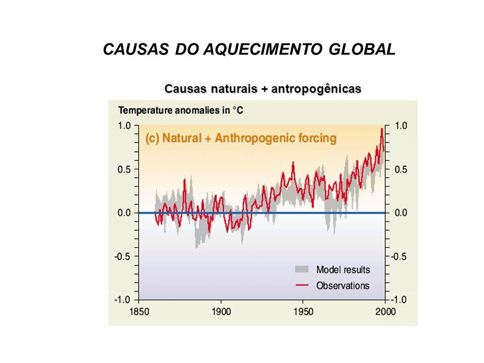 O tamanho desse aquecimento é amplamente consistente com previsões de modelos climáticos, mas também é da mesma magnitude que a variabilidade climática natural.