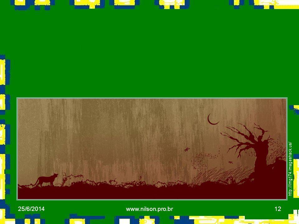 12 http://img174.imageshack.us/ 25/6/2014www.nilson.pro.br