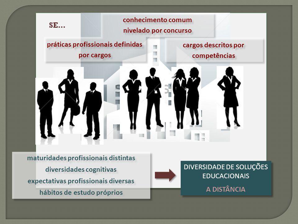 conhecimento comum nivelado por concurso práticas profissionais definidas por cargos cargos descritos por competências DIVERSIDADE DE SOLUÇÕES EDUCACI