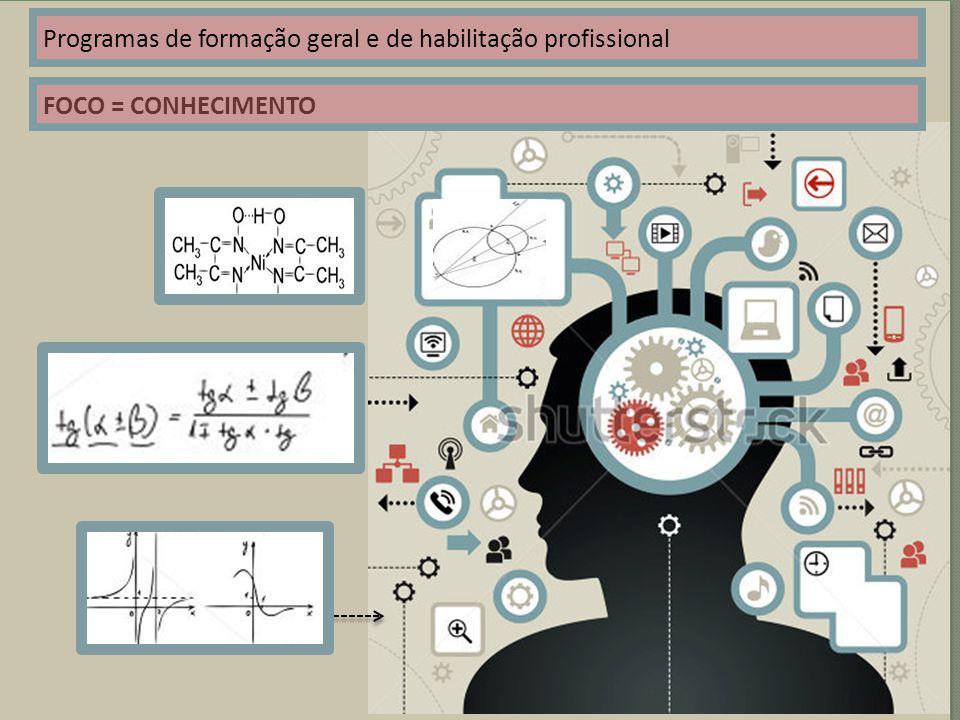 Programas de formação geral e de habilitação profissional FOCO = CONHECIMENTO